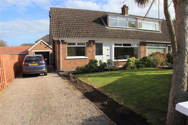 3 bedroom semi-detached house for sale in Innisbrook Gardens, Bangor
