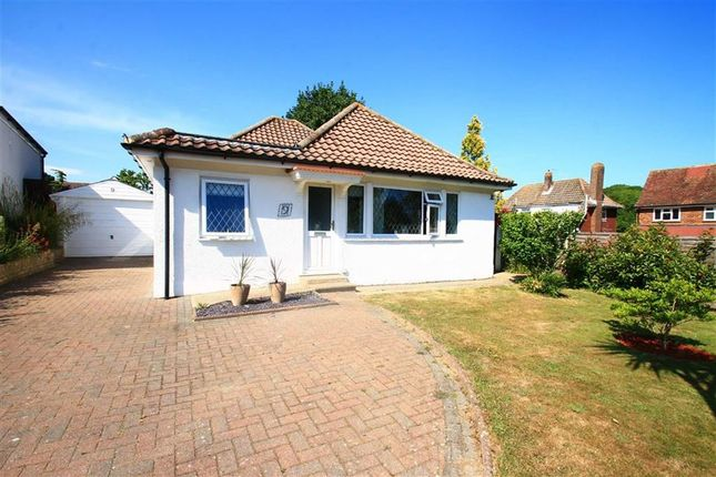 Thumbnail Detached bungalow for sale in Ironlatch Close, St Leonards-On-Sea, East Sussex