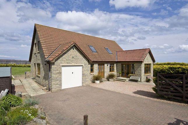 Lamberton Sheils, Lamberton, Berwickshire TD15