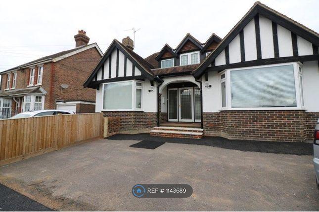 Thumbnail Room to rent in Franklynn Road, Haywards Heath