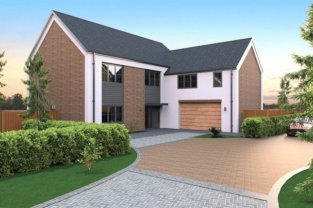 Thumbnail Detached house for sale in Maple Gardens, Drayton Road, Milton