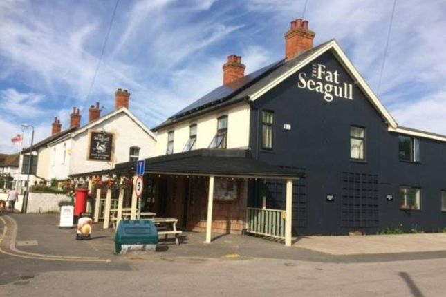 Thumbnail Restaurant/cafe for sale in The Fat Seagull, Mablethorpe