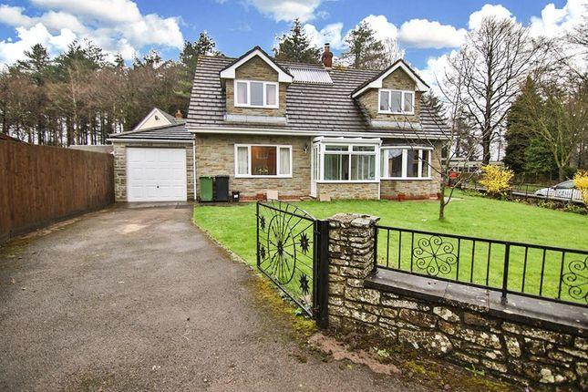 Thumbnail Detached bungalow for sale in Prosper Lane, Coalway, Coleford