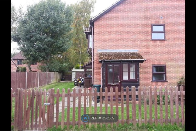 Thumbnail Terraced house to rent in Carolina Place, Finchampstead