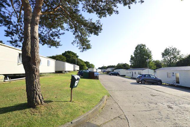 _Dsc0081 of Harley Shute Road, St Leonards-On-Sea, East Sussex TN38