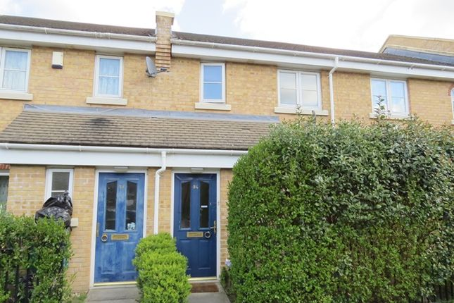 Thumbnail Terraced house to rent in Chestnut Grove, Anerley, London
