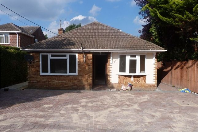 Thumbnail Detached bungalow to rent in Wood Street, Ash Vale