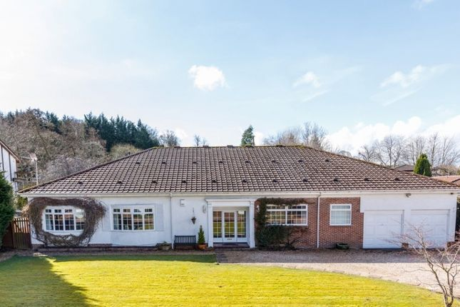 Thumbnail Detached bungalow for sale in 6 Forrestfield Crescent, Newton Mearns