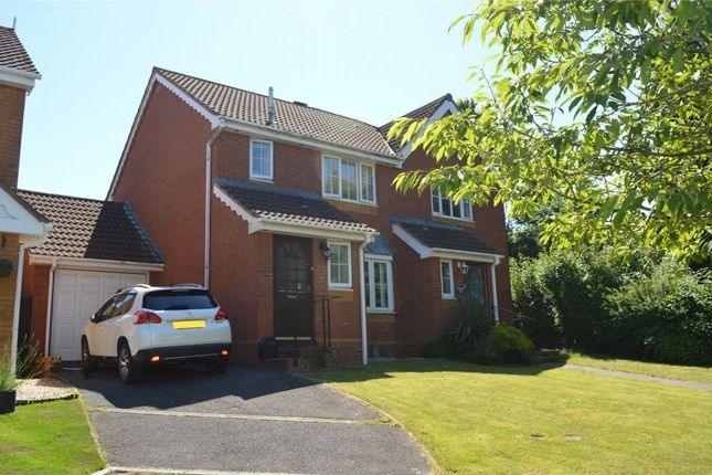 Thumbnail Semi-detached house to rent in Whitmore Way, Honiton, Devon