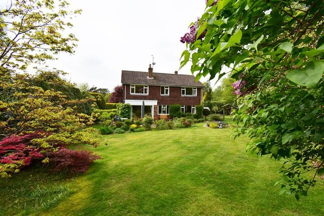 Thumbnail Detached house for sale in Old Lane, St. Johns, Crowborough, East Sussex