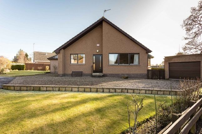 Thumbnail Bungalow for sale in Bearehill Gardens, Brechin, Angus