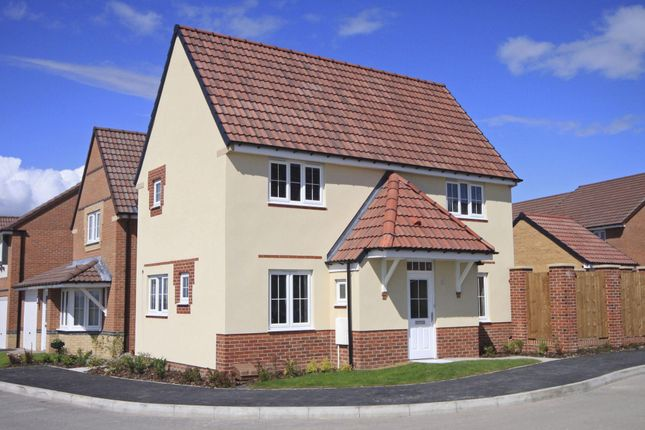 "Thumbnail Detached house for sale in ""Falmouth 1"" at Ponds Court Business, Genesis Way, Consett"
