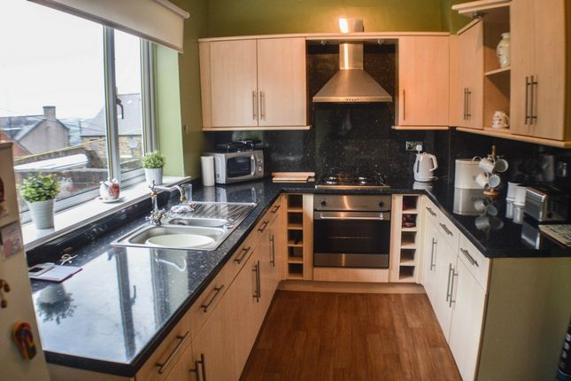 Thumbnail Terraced house to rent in Tulip Street, Prudhoe