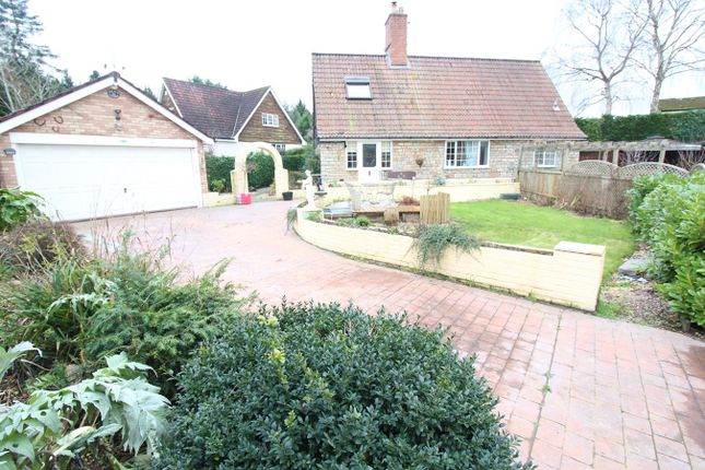Thumbnail Detached house for sale in Old Langstone Court, Langstone, Newport