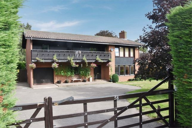 Thumbnail Detached house for sale in Main Road, Sundridge, Sevenoaks, Kent