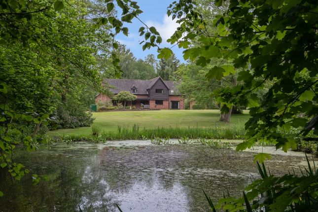 Thumbnail Detached house for sale in Newton Road, Hainford, Norwich
