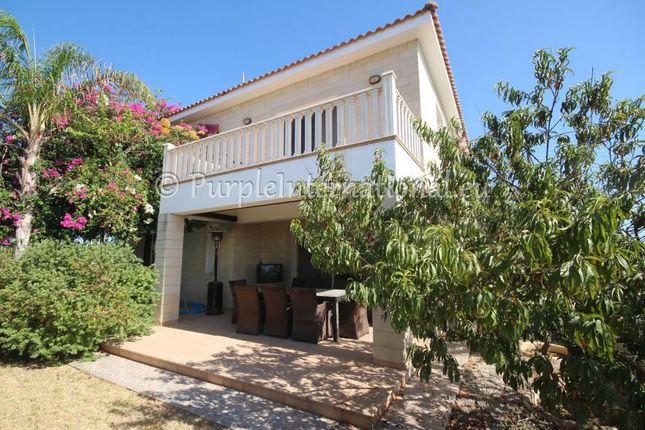 Mature Garden of Dhekelia, Cyprus