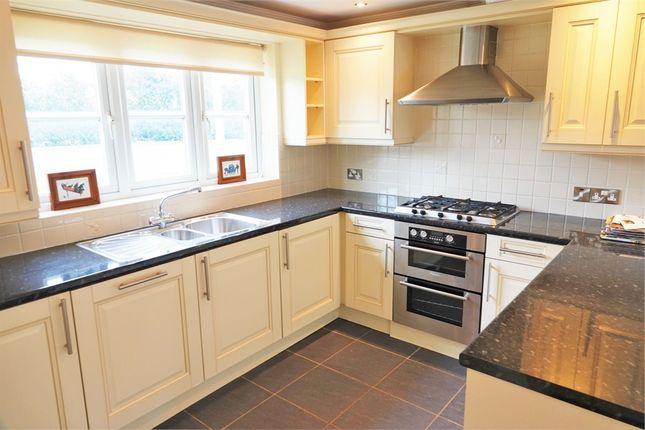 Thumbnail Detached house to rent in Levington Court, Thirsk Road, Kirklevington