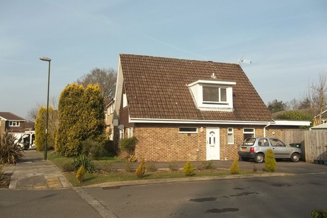 Thumbnail Detached house to rent in St. Catherines Road, Crawley