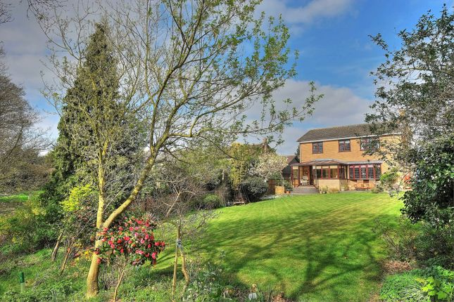 Thumbnail Detached house for sale in Curson Road, Norwich