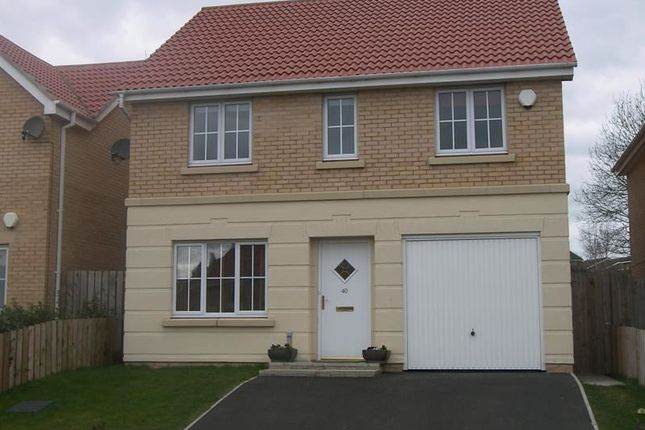 Thumbnail Detached house to rent in Chapel Drive, Consett