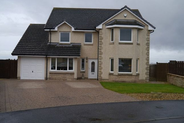 Thumbnail Property for sale in Macinnes Drive, Newarthill, Motherwell