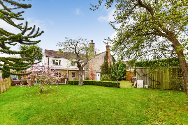 Thumbnail Detached house for sale in Turnpike Road, Lower Weare