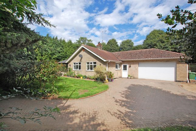 Thumbnail Detached bungalow for sale in Waterloo, Gillingham, Beccles