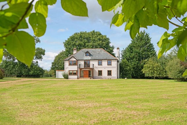 Thumbnail Detached house to rent in Lucewood Lane, Farley, Salisbury