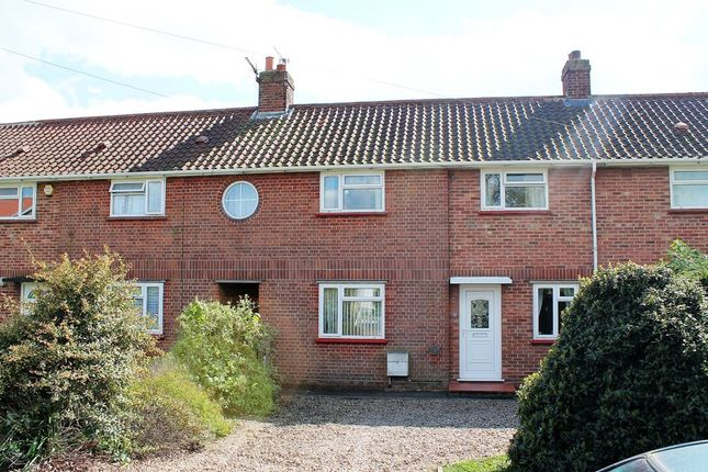 Thumbnail Terraced house for sale in Willbye Avenue, Diss