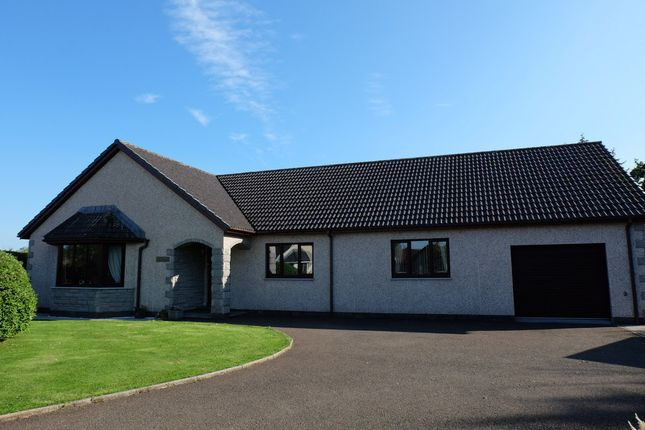 Thumbnail Detached house for sale in Manse Place, Halkirk
