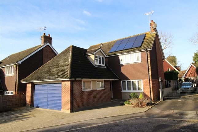 Thumbnail Detached house for sale in Thomas Close, Brentwood, Essex