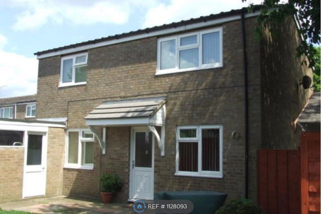 4 bed detached house to rent in Chester Road, Stevenage SG1