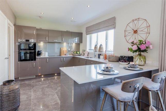 "Thumbnail Detached house for sale in ""Lockhart"" at Lasswade Road, Edinburgh"