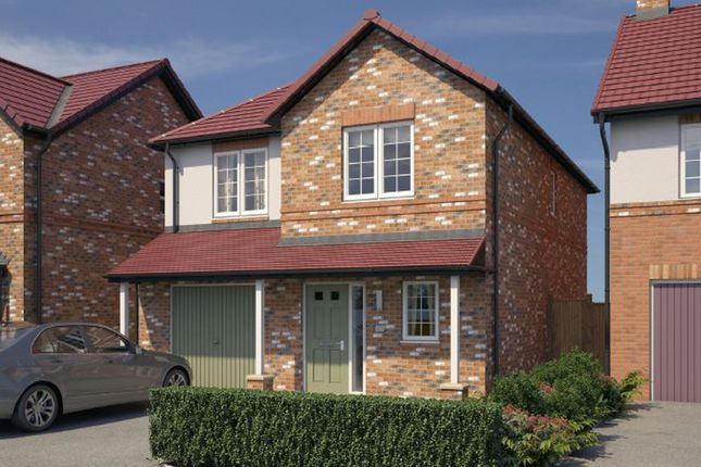 """Thumbnail Detached house for sale in """"The Newton"""" at Chilton, Ferryhill"""