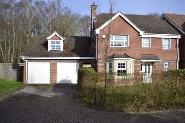 Thumbnail Detached house for sale in Pinewood Crescent, Hermitage, Berkshire