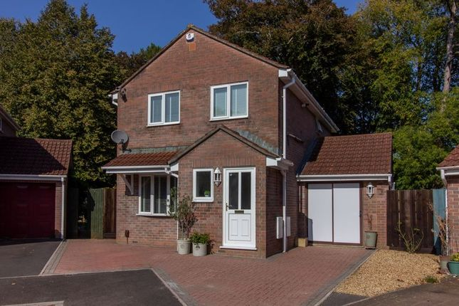 Thumbnail Property for sale in Vine Gardens, Frome