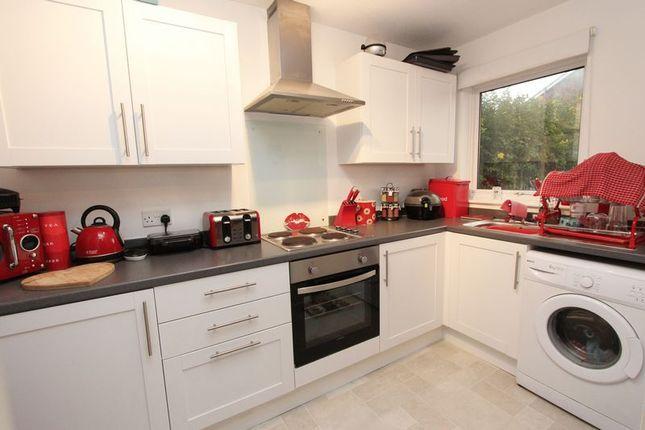 Thumbnail Property to rent in Springford Gardens, Southampton