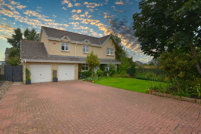 Thumbnail Detached house to rent in 6 The Haven, South Alloa, Stirling, .