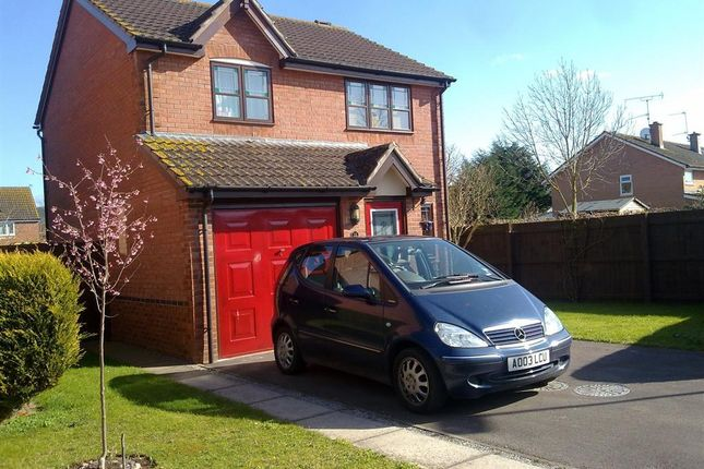 Thumbnail Property to rent in Patterson Way, Monmouth
