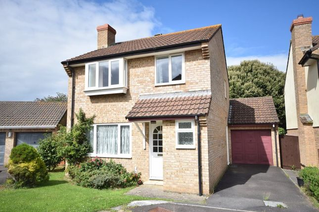 Thumbnail Property to rent in J H Taylor Drive, Northam, Devon