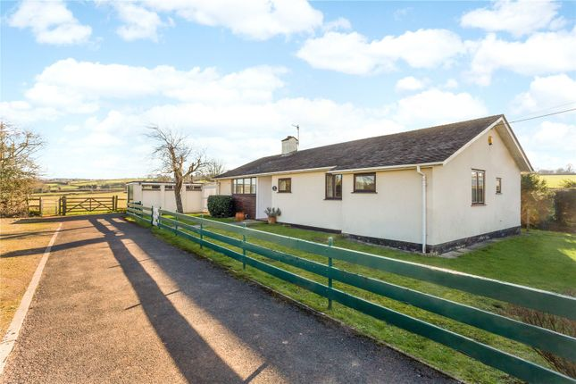Thumbnail Property for sale in Martcombe Road, Easton-In-Gordano, Bristol