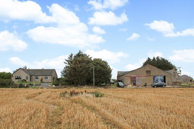 Thumbnail Farm for sale in Ardallie, Mintlaw, Peterhead