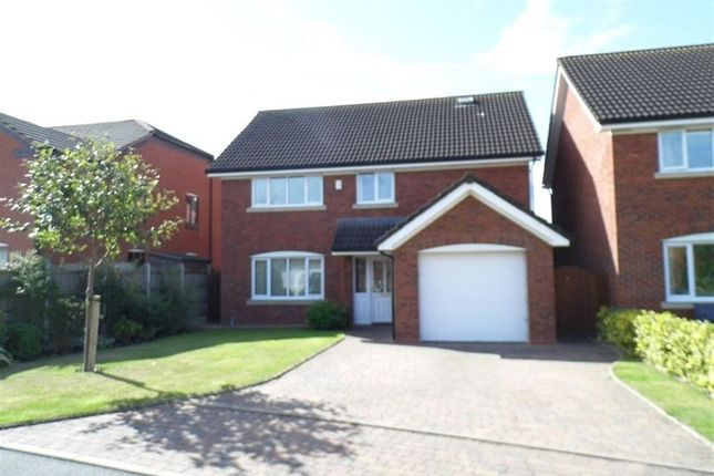 Thumbnail Detached house to rent in Cricket Meadow, Prees, Whitchurch