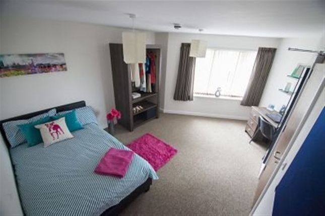 Thumbnail Room to rent in Infirmary Road, Aberystwyth