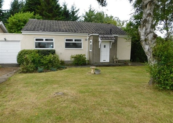 Thumbnail Detached bungalow to rent in Murieston Way, Murieston, Livingston