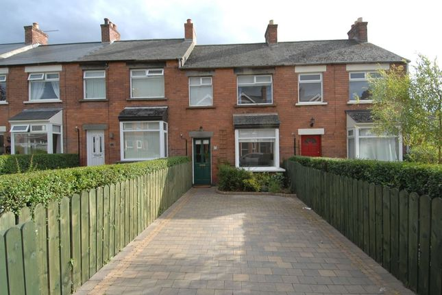 Thumbnail Terraced house to rent in Park Avenue, Holywood
