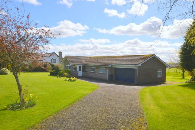Thumbnail Detached bungalow for sale in Castle Terrace, Berwick Upon Tweed, Northumberland