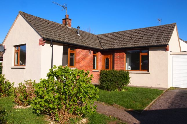 Thumbnail Detached bungalow for sale in Manor Mill, Knowle