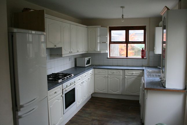 Thumbnail Terraced house to rent in Glenroy Street, Cathays, South Glamorgan CF243Lb